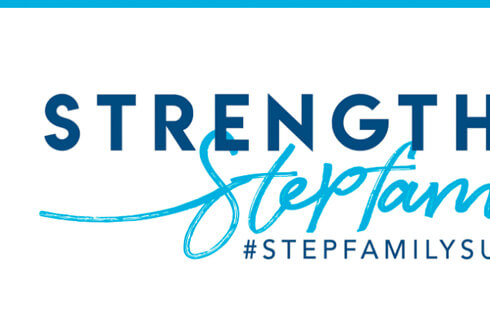 Summit On Step Family Ministries Website Detail